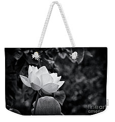 Weekender Tote Bag featuring the photograph Sacred Lotus Monochrome by Tim Gainey