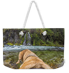 Weekender Tote Bag featuring the photograph Salt Creek Falls By Photo Dog Jackson by Matthew Irvin