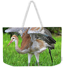 Sandy Crane Shows New Feathers Weekender Tote Bag