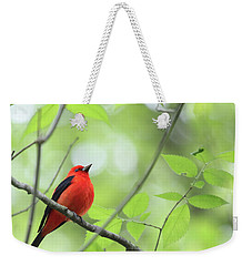 Weekender Tote Bag featuring the photograph Scarlet Tanager by Rick Veldman