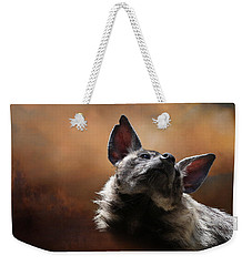 Weekender Tote Bag featuring the photograph Scenting The Air - Striped Hyena by Debi Dalio