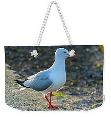 Seagull On The Breakwall Weekender Tote Bag