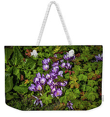 Weekender Tote Bag featuring the photograph September Crocus #h9 by Leif Sohlman
