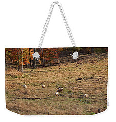Weekender Tote Bag featuring the photograph Sheep In A Field by Angela Murdock