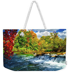 Weekender Tote Bag featuring the photograph Sidelined Beauty by Lynn Bauer