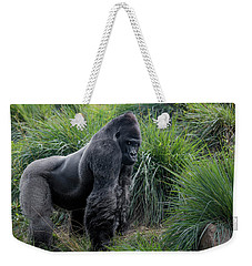 Weekender Tote Bag featuring the photograph Silverback Stare 1806 by Donald Brown