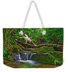 Sims Creek Waterfall Weekender Tote Bag