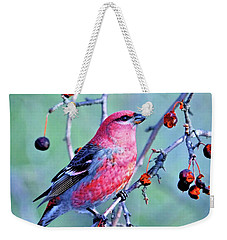 Weekender Tote Bag featuring the photograph Sitting Pretty by Debbie Stahre