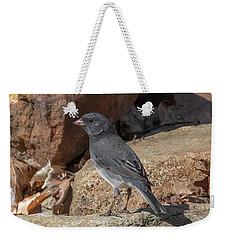 Slate-colored Junco Dsb0339 Weekender Tote Bag