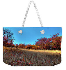 Weekender Tote Bag featuring the photograph Sliver Of Sunlight by David Patterson