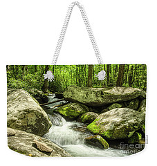 Weekender Tote Bag featuring the photograph Smoky Mountains In Spring by Mel Steinhauer