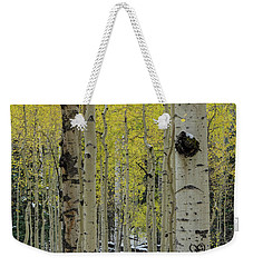 Weekender Tote Bag featuring the photograph Snowy Gold Aspen by Gaelyn Olmsted