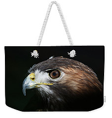 Sparkle In The Eye - Red-tailed Hawk Weekender Tote Bag