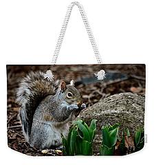 Squirrel And His Dinner Weekender Tote Bag