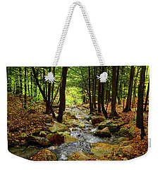 Weekender Tote Bag featuring the photograph Stream Rages Horizontal Format by Raymond Salani III