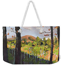 Weekender Tote Bag featuring the painting Summer At Pink  Knob In Ellijay by Jan Dappen