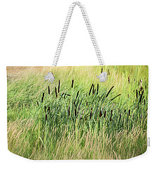 Summer Cattails In Field Of Grass - Weekender Tote Bag