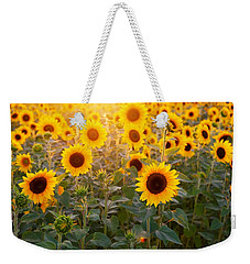 Sunflowers Field Weekender Tote Bag