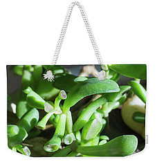 Weekender Tote Bag featuring the photograph Sunlit Alien Landscape by MM Anderson