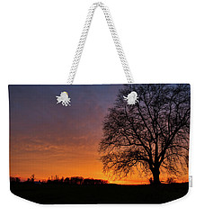 Weekender Tote Bag featuring the photograph Sunset Silhouette Tree by Mark Dodd