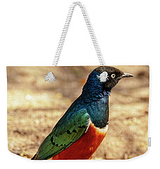 Weekender Tote Bag featuring the photograph Superb Starling by Kay Brewer