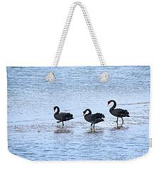 Swans On Parade Weekender Tote Bag