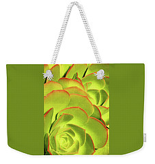 Weekender Tote Bag featuring the photograph Sweet Succulents II by Leda Robertson