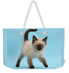 Weekender Tote Bag featuring the photograph Swiggerty Swooty by Warren Photographic