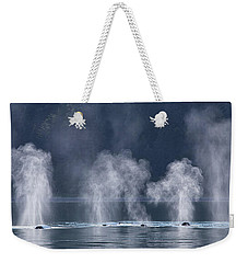 Weekender Tote Bag featuring the photograph Synchronized Swimming Humpback Whales Alaska by Nathan Bush