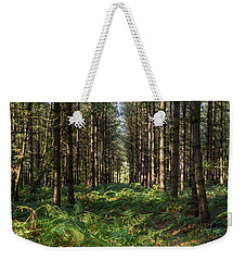Tall Trees In Sherwood Forest Weekender Tote Bag