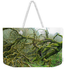Weekender Tote Bag featuring the photograph Tangled Moss by Mark Duehmig