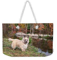 Tasha 7 Better Colors Weekender Tote Bag