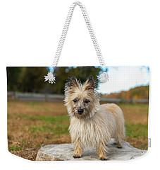 Tasha Weekender Tote Bag