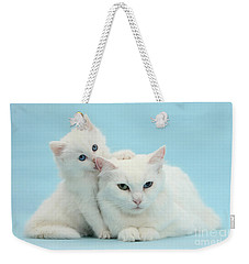 Weekender Tote Bag featuring the photograph Thankless Kitten by Warren Photographic