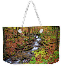 Weekender Tote Bag featuring the photograph The Autumn Forest by Bill Wakeley