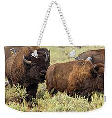 The Beast Weekender Tote Bag