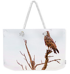 Weekender Tote Bag featuring the photograph The Crowned Eagle by Kay Brewer