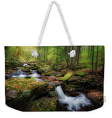 Weekender Tote Bag featuring the photograph The Ethereal Forest by Bill Wakeley
