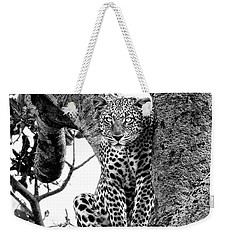 Weekender Tote Bag featuring the photograph The Leopard Sits In Wait In Black And White by Kay Brewer