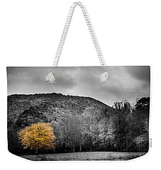 Weekender Tote Bag featuring the photograph The Lone Yellow Tree by Greg Mimbs