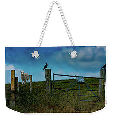 Weekender Tote Bag featuring the photograph The Sheep That Hates Dogs by Chris Lord
