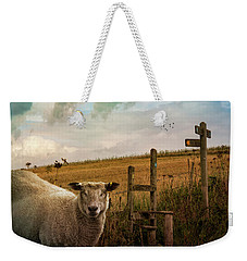 Weekender Tote Bag featuring the photograph The Sheep Who Knows Where She's Going by Chris Lord