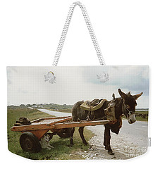 Weekender Tote Bag featuring the painting The Turf Donkey by Val Byrne