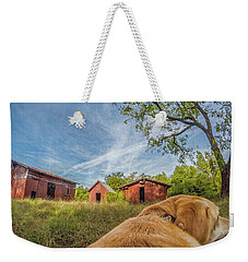 Weekender Tote Bag featuring the photograph Thornburg Barns By Photo Dog Jackson by Matthew Irvin
