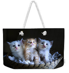 Three Little Kitties Weekender Tote Bag