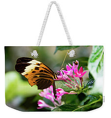 Tiger Longwing Butterfly Drinking Nectar  Weekender Tote Bag