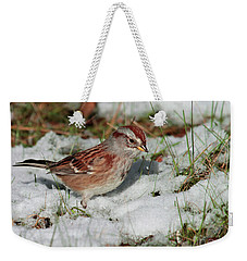 Weekender Tote Bag featuring the photograph Tree Sparrow In Snow by Debbie Stahre