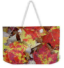 True Autumn Colors Weekender Tote Bag
