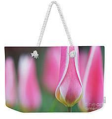 Tulip Lady Jane Flowers Weekender Tote Bag