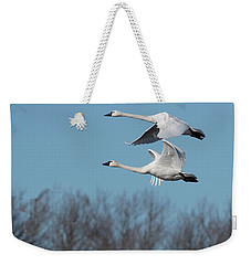 Weekender Tote Bag featuring the photograph Tundra Swan Duo by Donald Brown